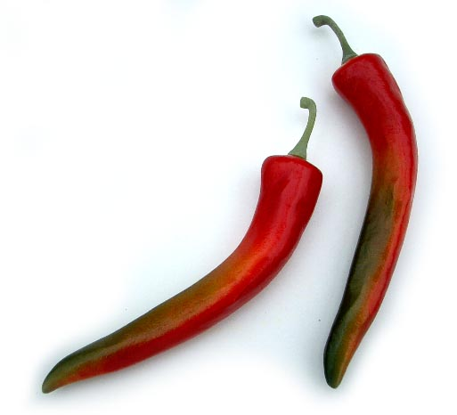 Large Red Chili Pepper