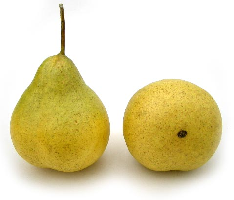 Artificial Yellow/Green (Small) Demi Pear