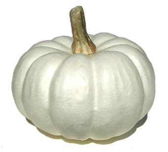 This set of four lightweight pumpkins would be great in a wreath, cornucopia, or your tablescape for fall. Include a birch or twig riser, faux flowers, and faux leaf picks .