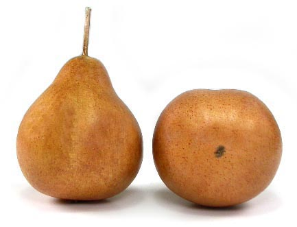 Artificial Brown (Small) Demi Pear