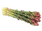Artificial/Fake Asparagus