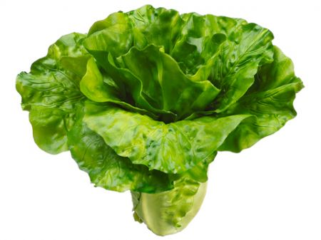 Artificial Fake Faux Lettuce