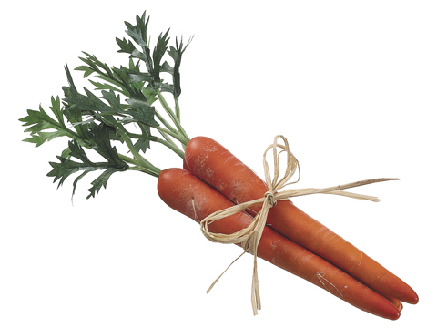 Artificial Carrot 11""