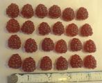 Small Artificial Red Raspberry - 3 each